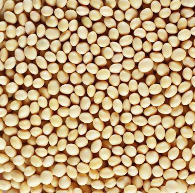 Latte di soia aiuta con vampate di calore?