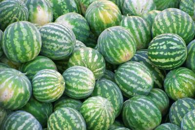 Come i meloni bene per te?