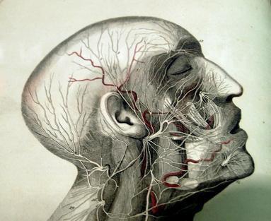 Sintomi precoci di tumore di cervello