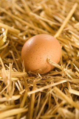 Come lavare le uova dell'azienda agricola
