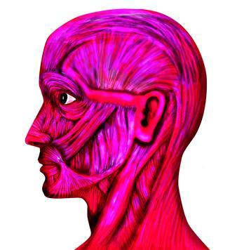 Esercizi per sciogliere i muscoli del viso
