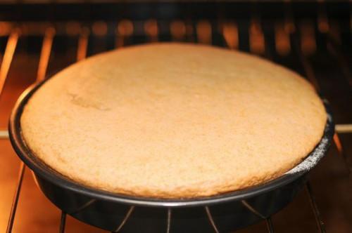 Come sostituire la Stevia per zucchero in torte
