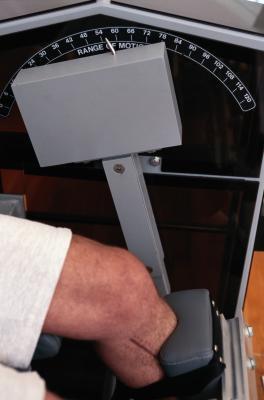 Muscoli anteriori dell'articolazione del ginocchio