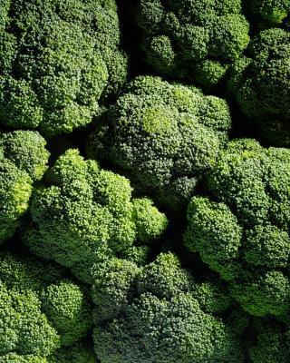 Quali sono i benefici della vitamina K7?