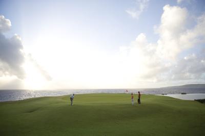 Che cosa è un campo da Golf Links-stile?