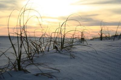 Spiagge vicino a Jacksonville, North Carolina