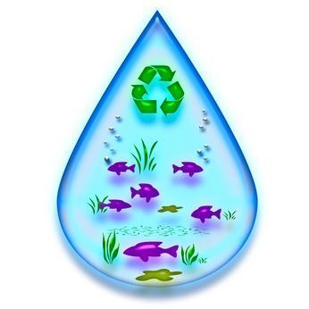 L'inquinamento & fatti di riciclaggio