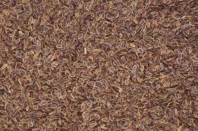 Olio di semi di lino & pillola anticoncezionale