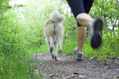 Modifiche come correre il tuo corpo