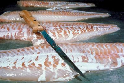 Benefici del norvegese Cod Liver Oil