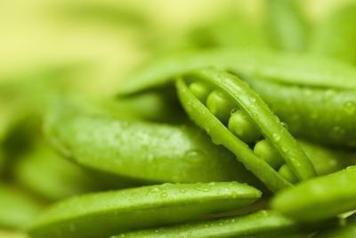 Elenco delle verdure della alto-fibra