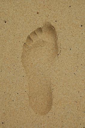 Quali sono le cause della grande Carbon Footprint?
