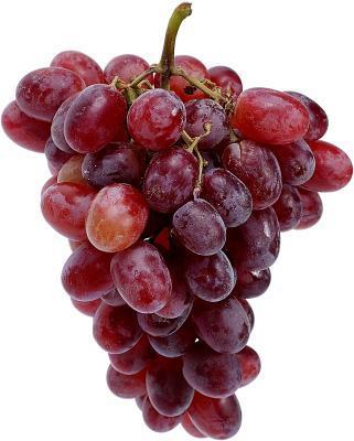 Estratto di semi d'uva & perdita dei capelli
