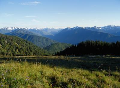 Escursioni vicino a Dungeness, Washington