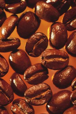 Collegamento tra caffeina e Acne