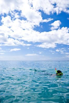 Snorkeling al largo di La Romana, Repubblica Dominicana