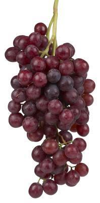 Cosa al vostro corpo uva?