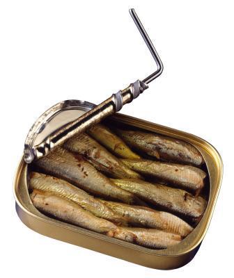 Livelli dello iodio in sardine