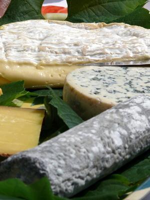 Sani sostituti per gorgonzola sbriciolato