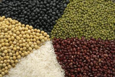 Grasso-Flush dieta per vegetariani
