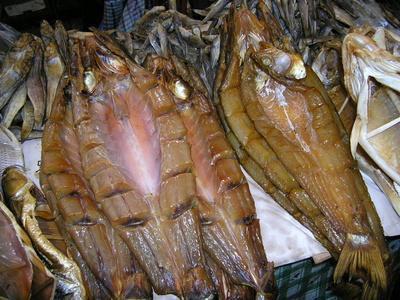 Interazione del farmaco di Xanax & olio di pesce
