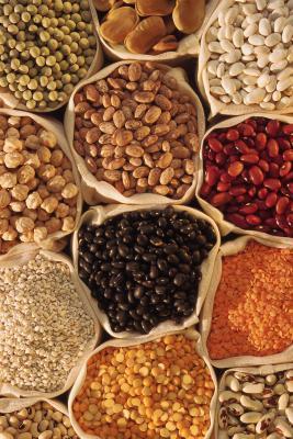 Dieci tipi di fagioli della alto-fibra