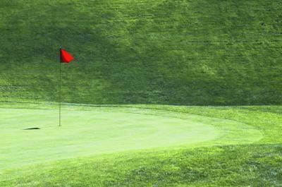 Golf telemetri Pro e contro