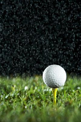 Confronto di palline da Golf Titleist