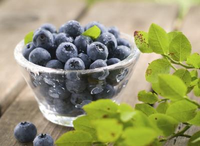 Alcuni alimenti possono aumentare il metabolismo?