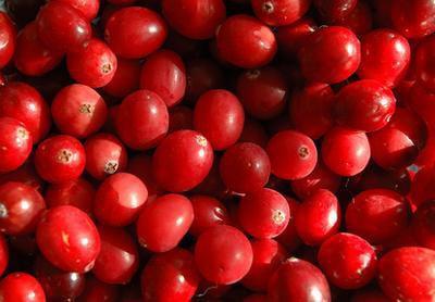 Mirtillo rosso per lavare le tossine