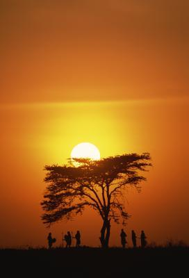 Kenya Safari di campeggio