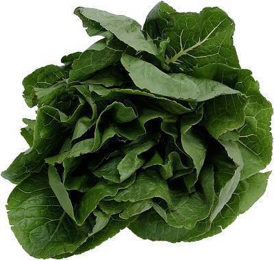 Come cucinare & congelare spinaci