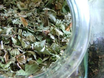 Gli alimenti ricchi in teanina