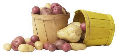 Alimenti con glucosio & amido
