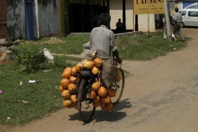 Che cosa fa l'olio di cocco per il corpo?