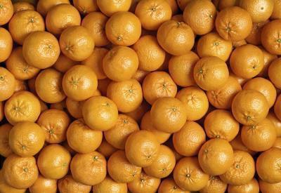 Lista dei cibi agrumi
