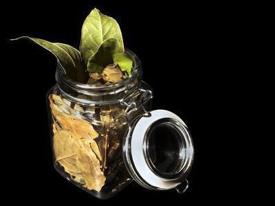 Trattamenti di erbe per BPCO & bronchite cronica