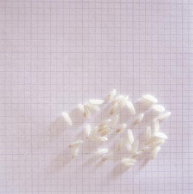 Nutrizione di riso bollito vs riso cotto a vapore