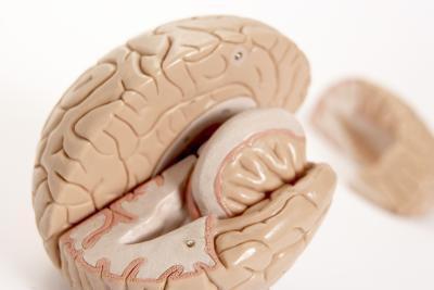 Esercizi di cervello per l'ADHD