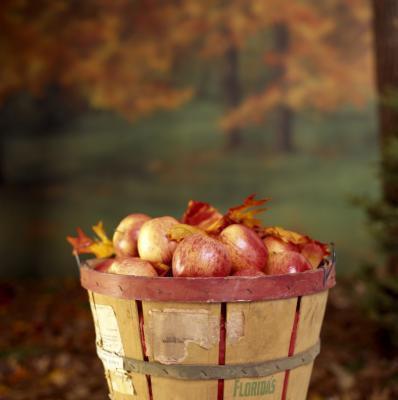 Che cosa fa aceto di sidro di mele per il grasso della pancia?