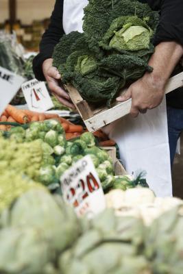 Della alto-fibra, Low-Carb alimenti
