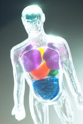 Determinati alimenti portare dolore con un ingrossamento della milza?