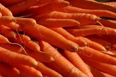C'è il pericolo di un consumo eccessivo di vitamina A?