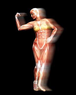 Stimolazione della contrazione muscolare