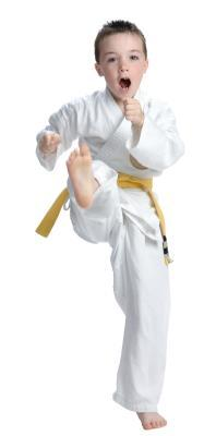 Requisiti per una cintura gialla in Jiujitsu