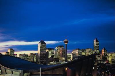 Attività per bambini a Calgary