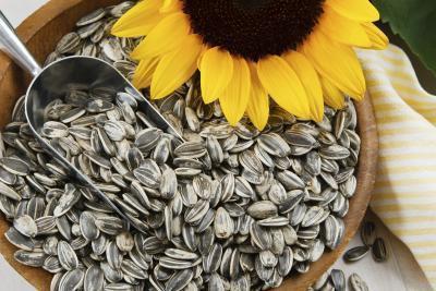 Buone fonti alimentari di vitamina E