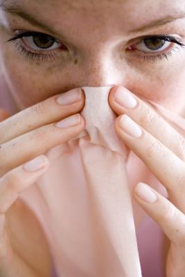 Qual è la migliore tisana da bere quando si ha un raffreddore?