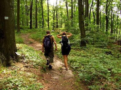 Escursioni l'apice in Amburgo, Pennsylvania