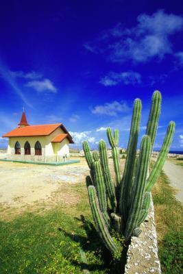 Escursioni isola di Aruba